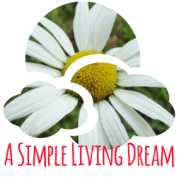 A Simple Living Dream